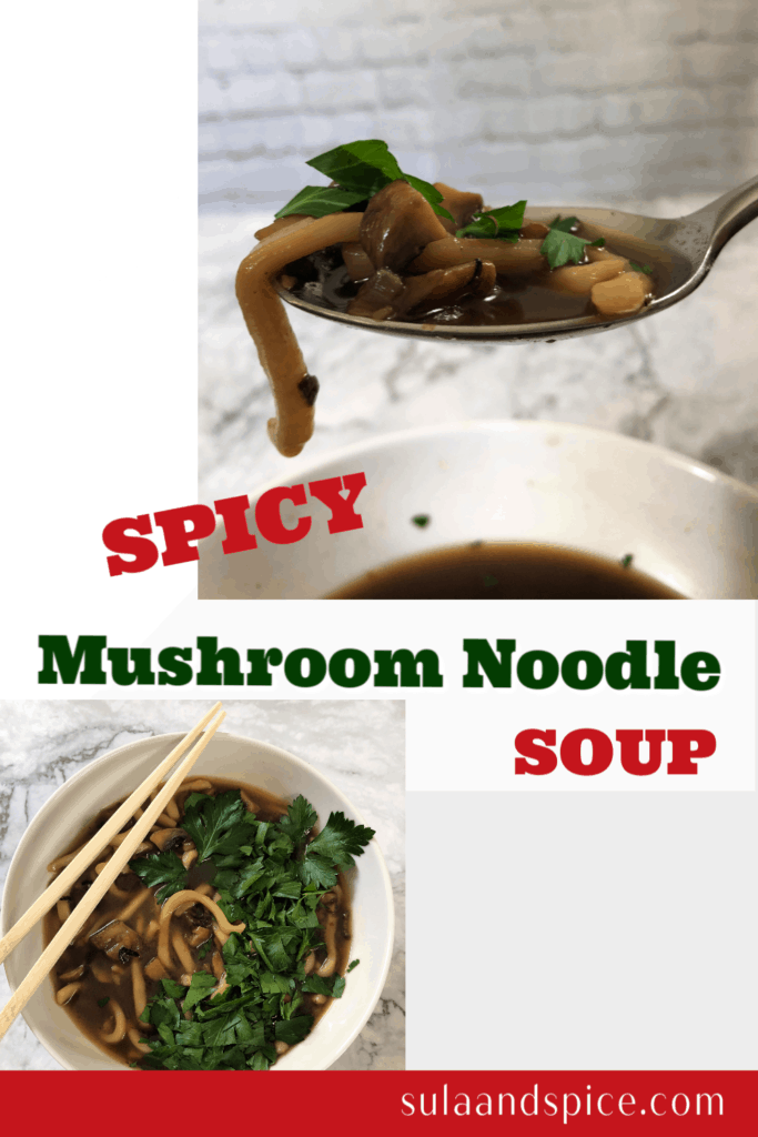Spicy mushroom noodle soup pin