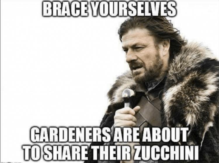 Funny picture regarding zucchini