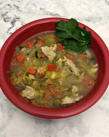 Low carb chicken noodle soup in a red bowl