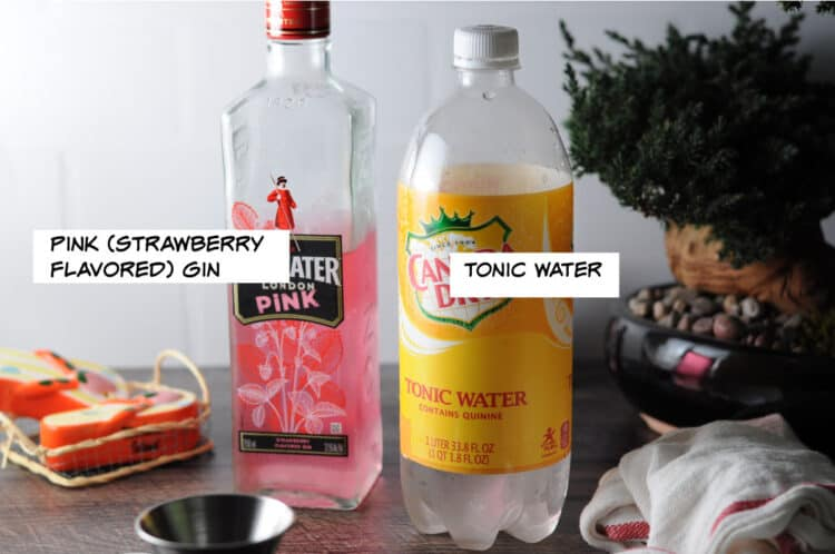 PINK GIN AND TONIC WATER
