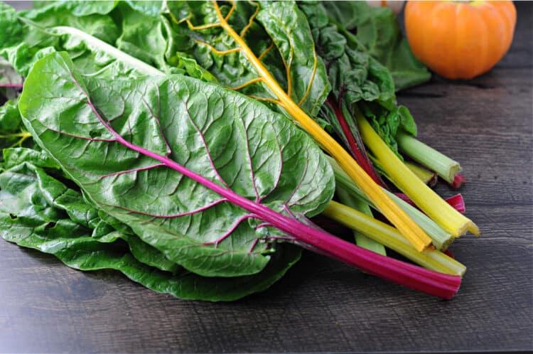 raw swiss chard in rainbow colors